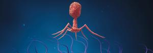 Bakteriophag